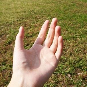 手の平1.jpg